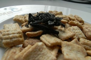 bat mummy found in cereal photo