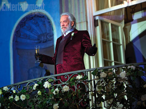 the-hunger-games-catching-fire-donald-sutherland