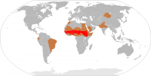 The African Meningitis Belt is seen here in red. Photo/Leevanjackson visa Wikimedia Commons