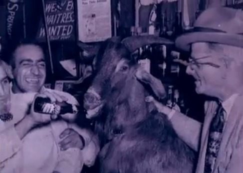 The Billy Goat curse and the Chicago Cubs dates back decades, but a severed goat's head showing up a Wrigley now has the police investigating the likely prank photo screenshot of History Channel video