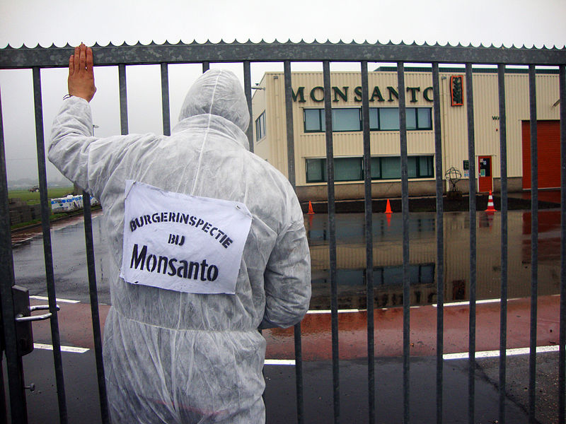 public inspection of Monsanto plant in Netherlands