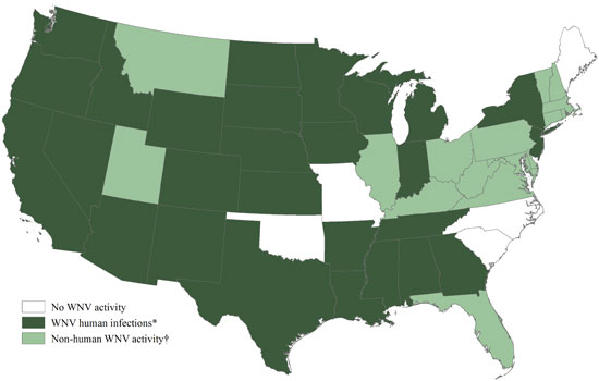 West Nile Virus Activity by State – United States, 2013 (as of August 20, 2013) Image/CDC