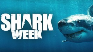 Shark Week is back!