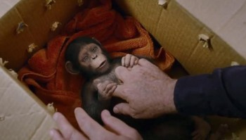 """The """"Moses"""" moment of Caesar being discovered in """"Rise of the Planet of the Apes"""""""