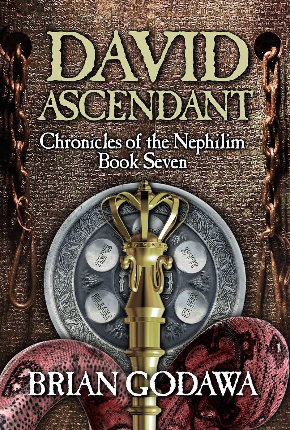 David Ascendant book cover