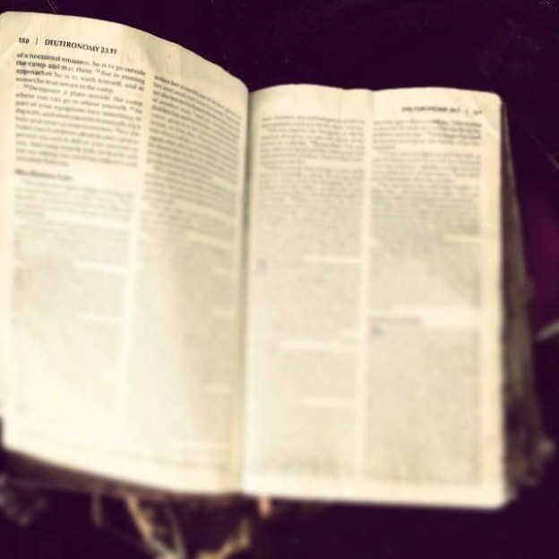 Lady Antebellum posted this photo of her Bible which survived a bus fire  photo/ facebook
