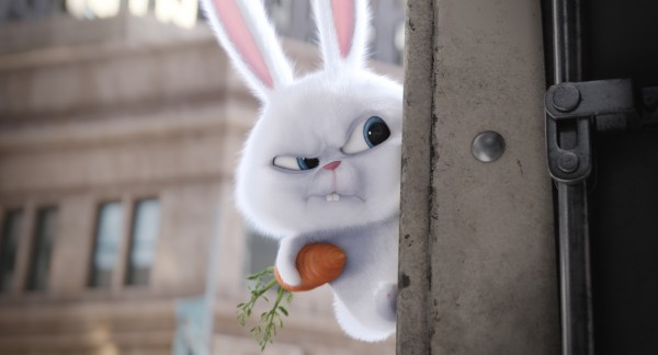 "Kevin Hart's psychotic rabbit, Snowball, in ""The Secret Life of Pets"""