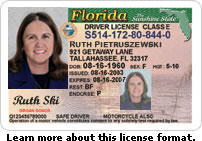 Sample Florida Driver's License photo/ http://taxcol.martin.fl.us
