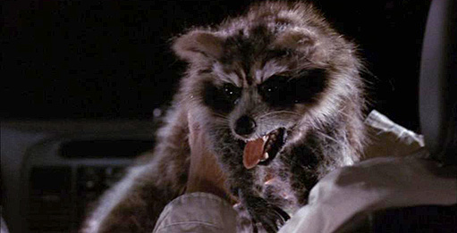 """Rabid racoon attack from """"Harold & Kumar Go to White Castle""""/New Line Cinema"""