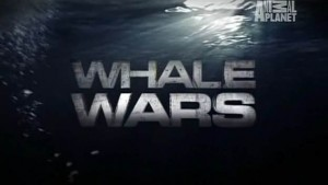 Whale Wars title card screenshot photo