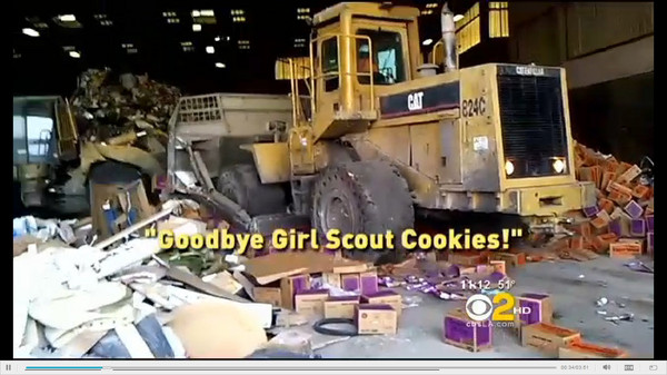 bulldozer girl scout cookies destroyed