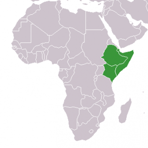 Horn of Africa Public domain image/ Lexicon at the English Wikipedia project