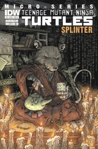 Teenage_Mutant_Ninja_Turtles_Microseries_5_Splinter