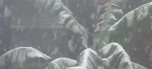 Snow in the Philippines? No, it was faked Image/Video Screen Shot