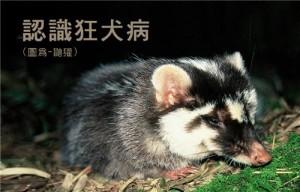Image/Taiwan CDC