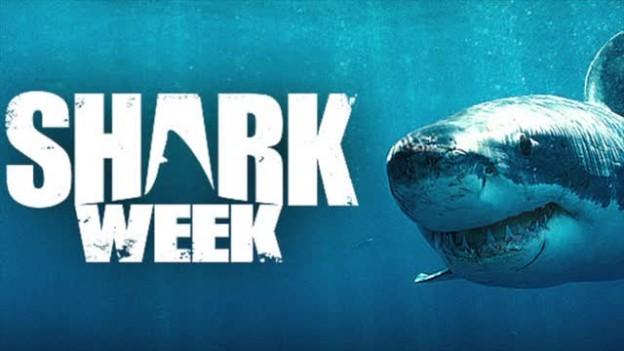 Shark Week is back!