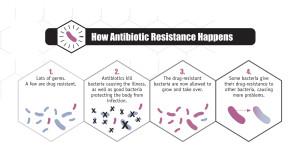 How antibiotic resistance happens Image/CDC