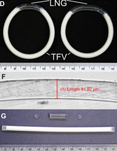 IVR Design Overview. Image/Patrick F. Kiser PLoS One