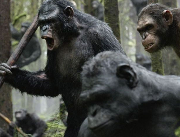 Apes battle cry Dawn of the Planet of the Apes