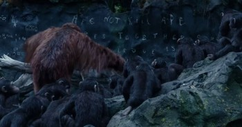 Ape not kill ape dawn of the planet of the apes