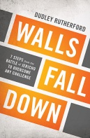 Walls Fall Down book cover