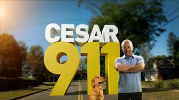 Cesar 911 Nat Geo Wild banner