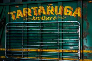 TMNT 2 Tartaruga brothers logo
