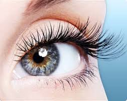 photo supplied/ Top Eyelash Serums