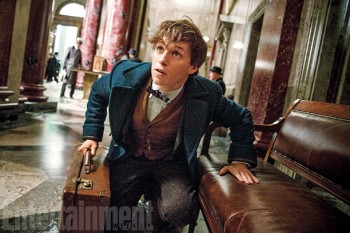 fantastic-beasts-eddie redwayne as newt scamander in action