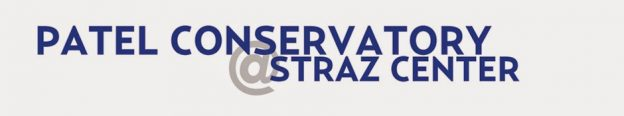 Patel-Straz-logo-940-web