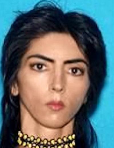 Internet celebrity Nasim Najafi Aghdam identified as ...
